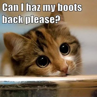 boots back