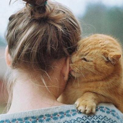 girl cat hug