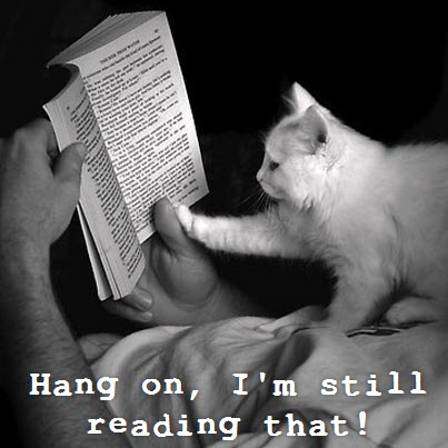 im reading that
