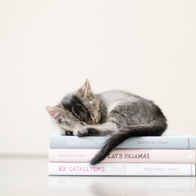 kitten sleep books