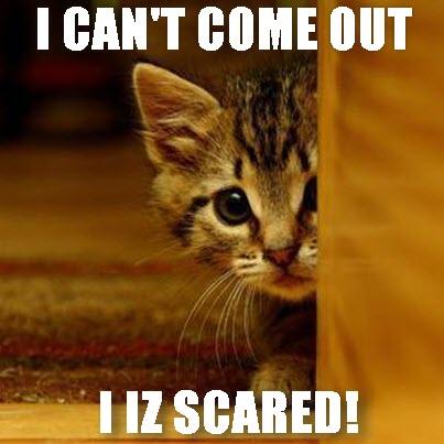 no i iz scared