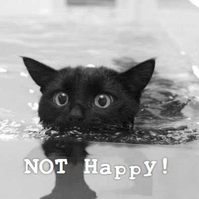 not happy