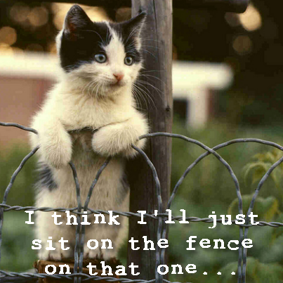 sit on fence
