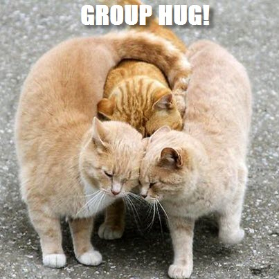 Group hug cats