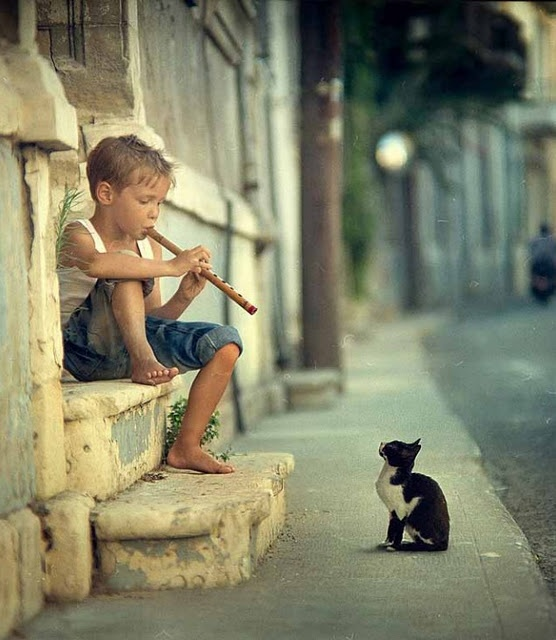 an audience of one pied piper