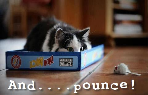 and pounce