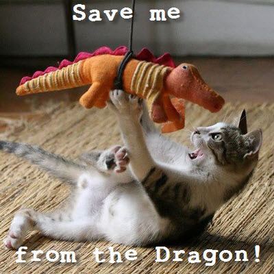 cat dragon attack