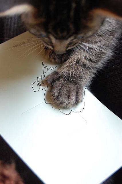 cat draw hand