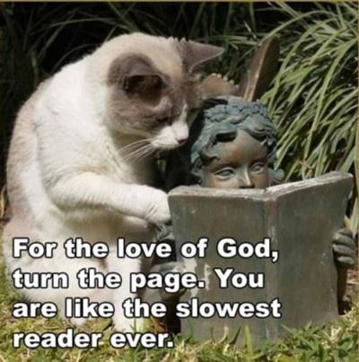 cat slow reader