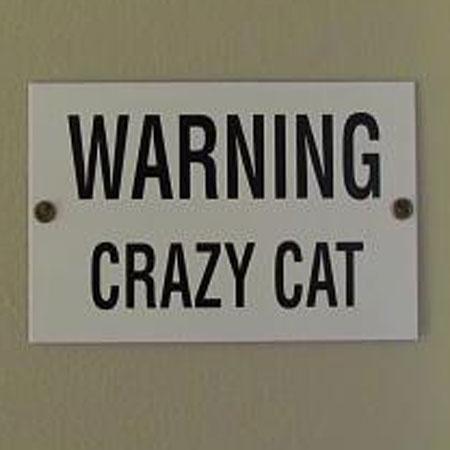 crazy cat sign