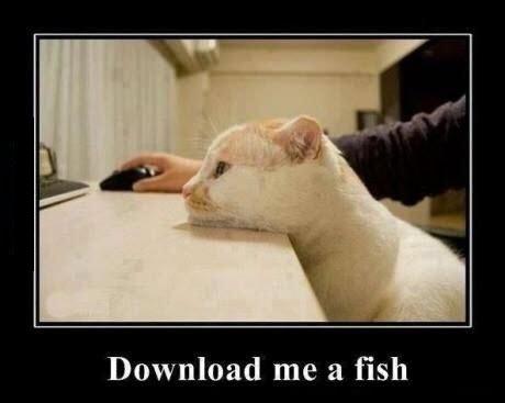 download fish