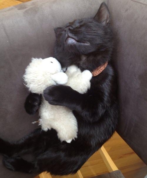 happy lamb toy