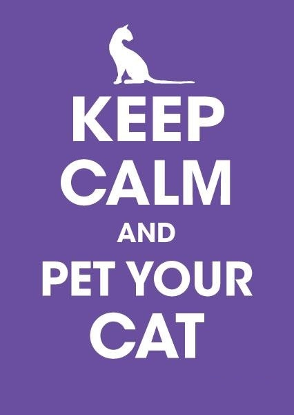 keep calm pet cat