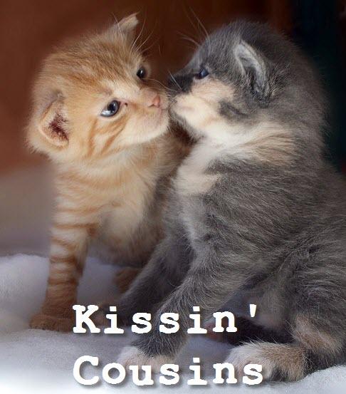 kisin cousins