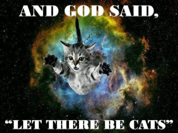 let ther b cats