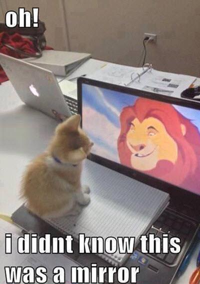lion king mirror