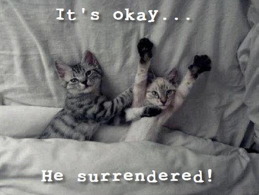 okay he surrendered