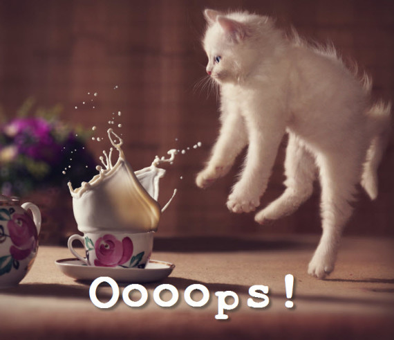 oops kitty
