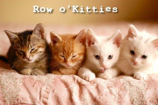 row o cats