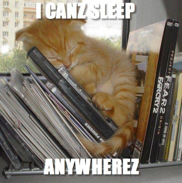 sleep anywhere