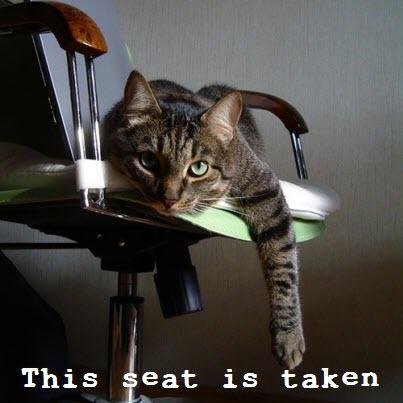 this seat is taken