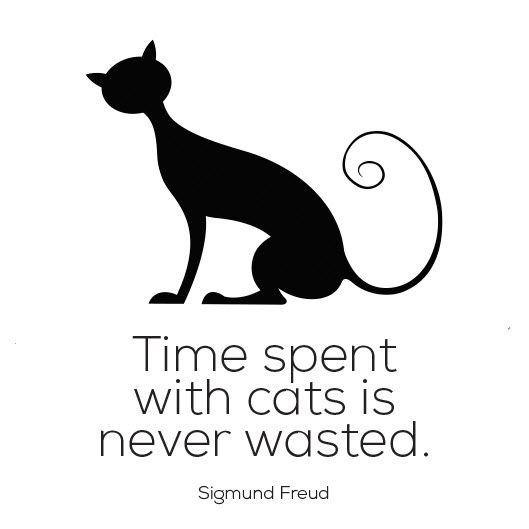 time spent with cats sigmund