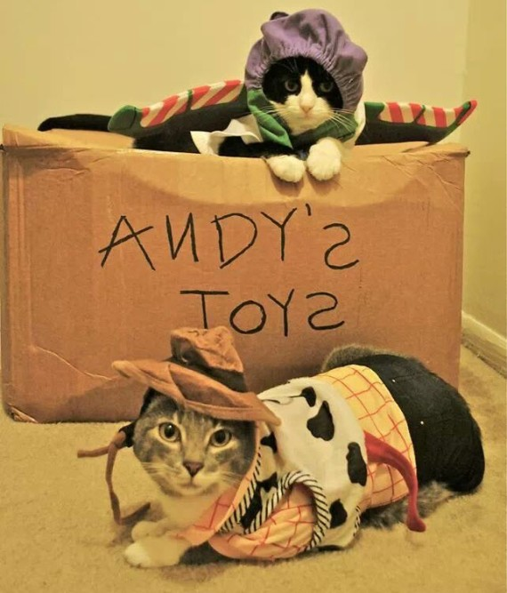 toy story cats