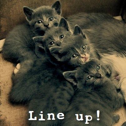 whole line of cutenes