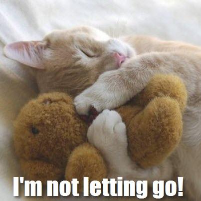wont't let go