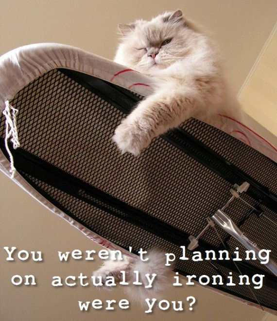 you werent planning on ironing were you