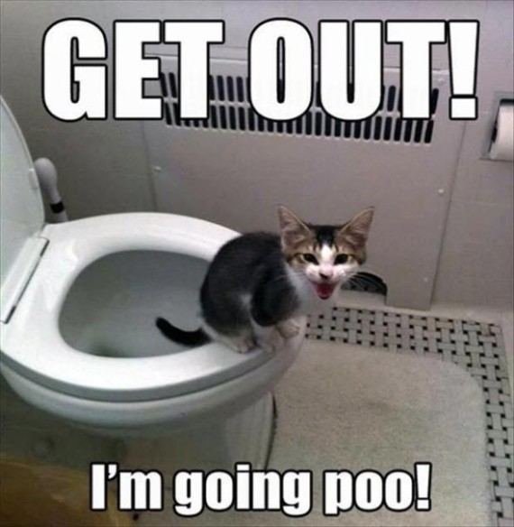 going poo