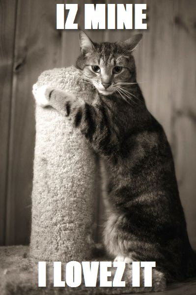 my scratching post
