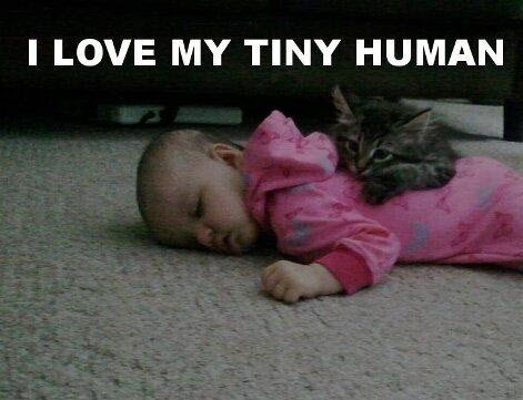 love tiny human