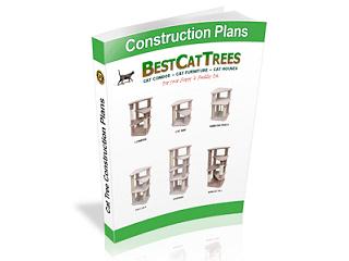 best-cat-trees
