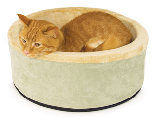 heated-cat-bed
