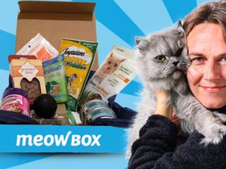 meow-box