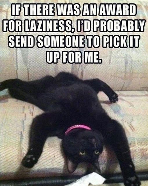 award for laziness