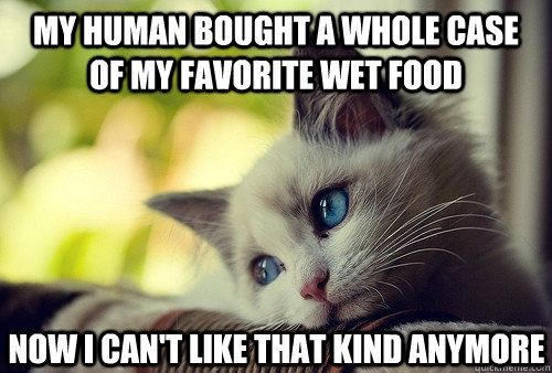 favourite wet food