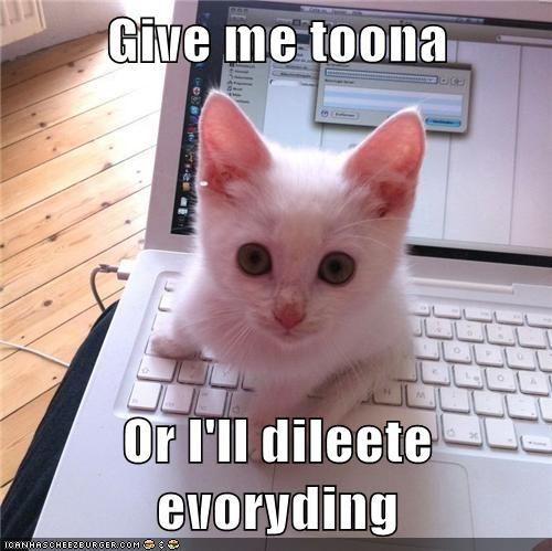 give me tuna