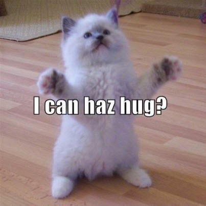 haz hug