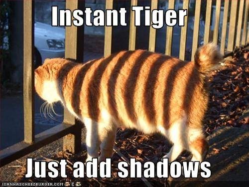 instant tiger