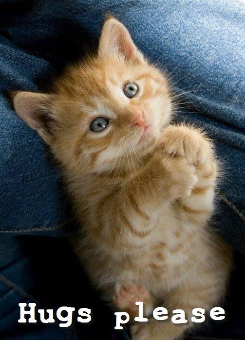 hugs please