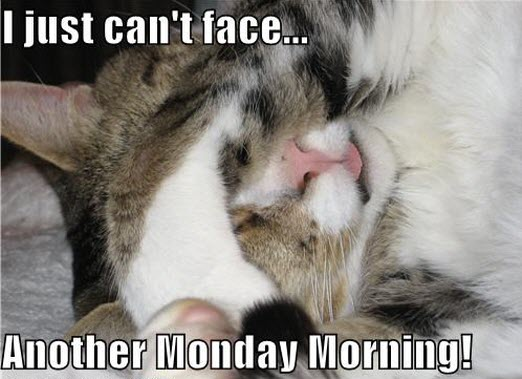 monday morning LOL