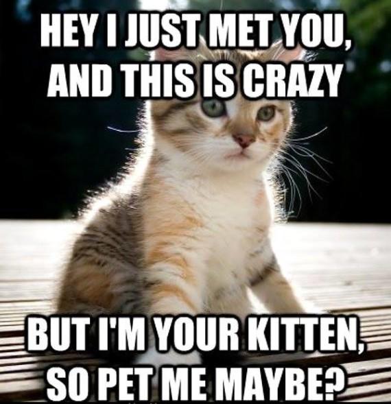 just met you lol