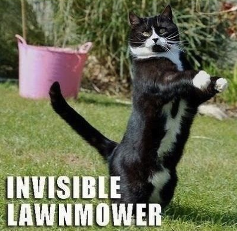 7 lawnmower