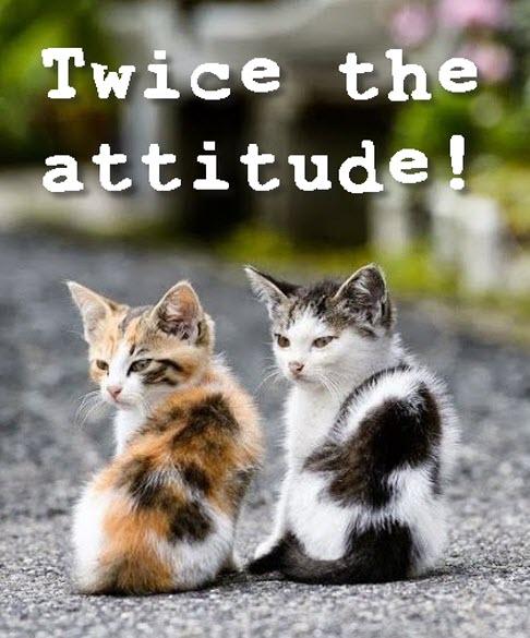 Twice the attitude