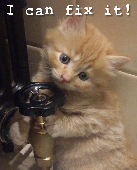 plumber cat can fix it