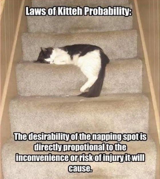 laws lol
