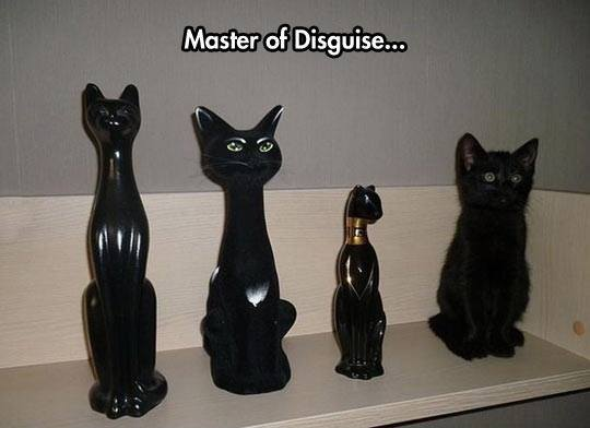master of disguise lol