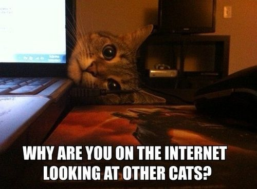 why internet